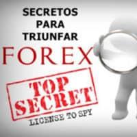 Trading y Cursos de Forex